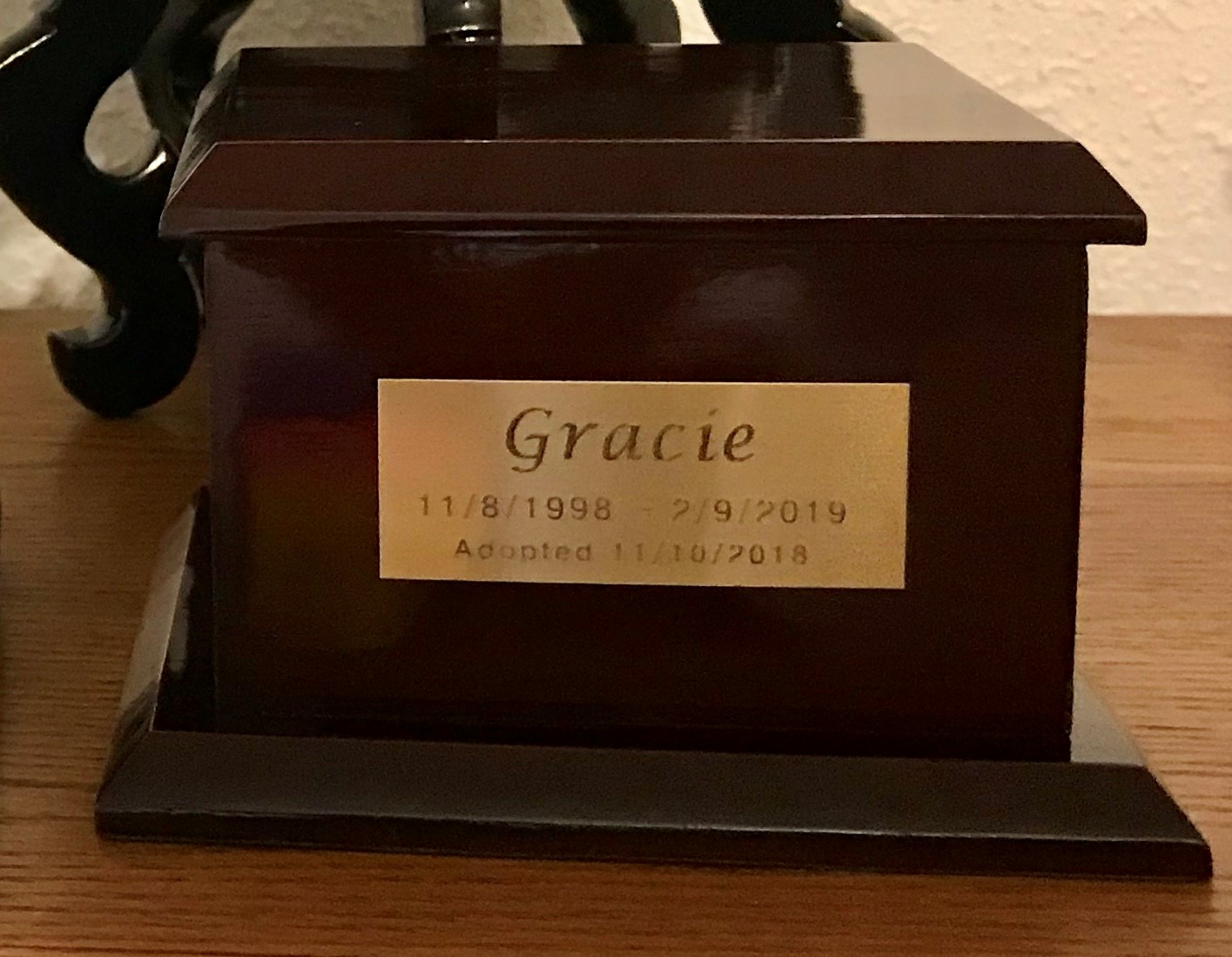 Gracie's ashes