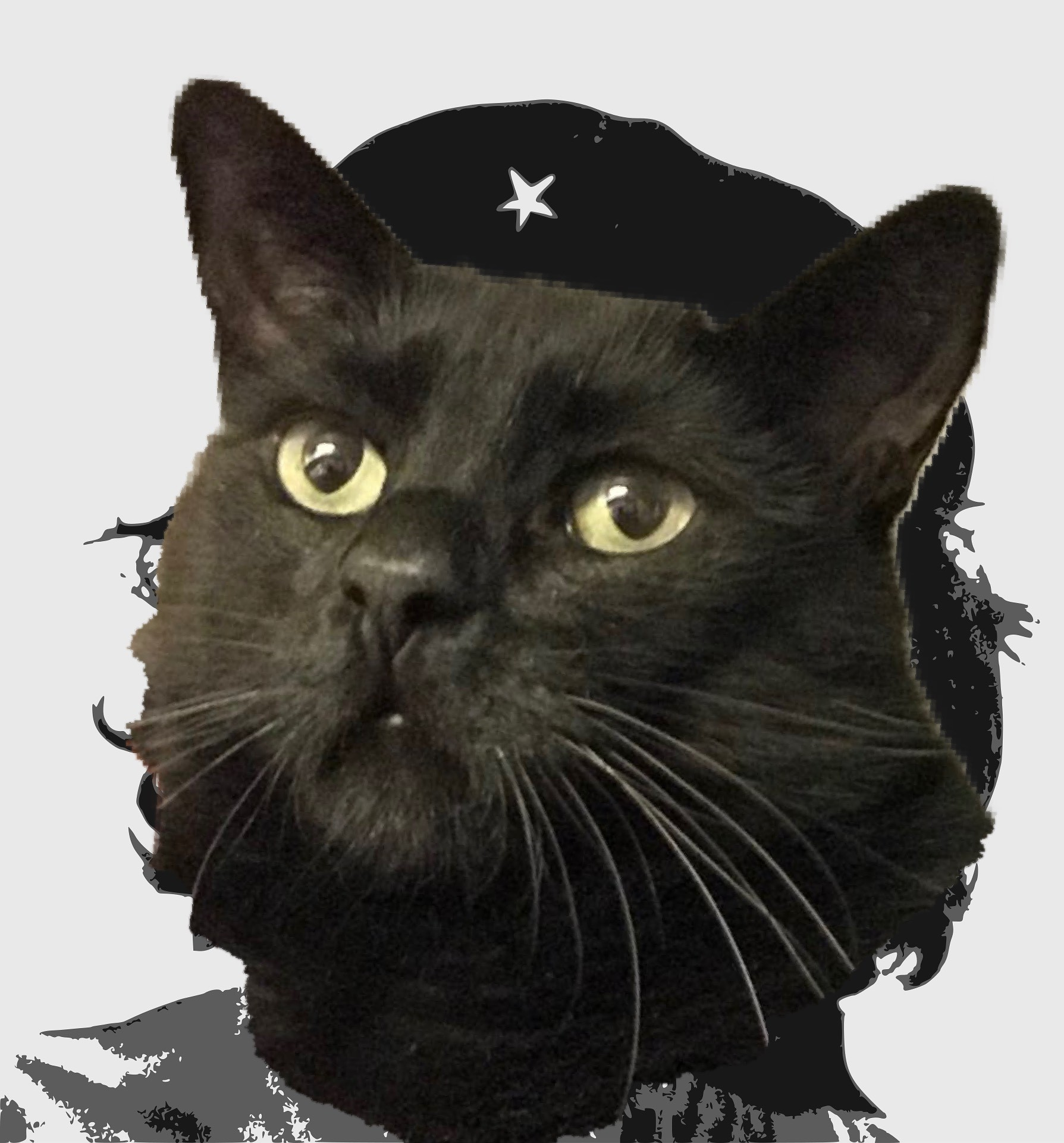 Tibbs as Che