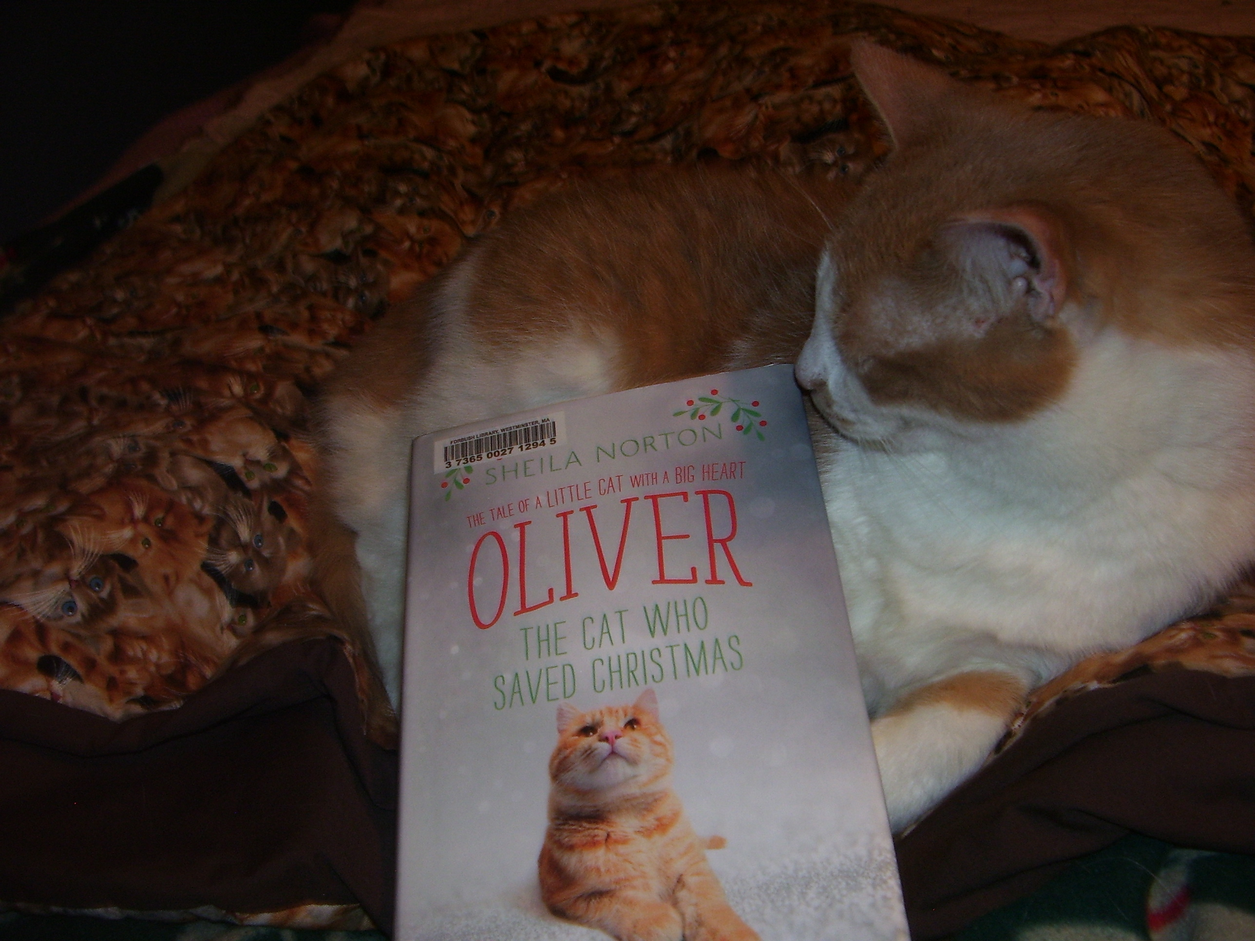 Sammy with Oliver book