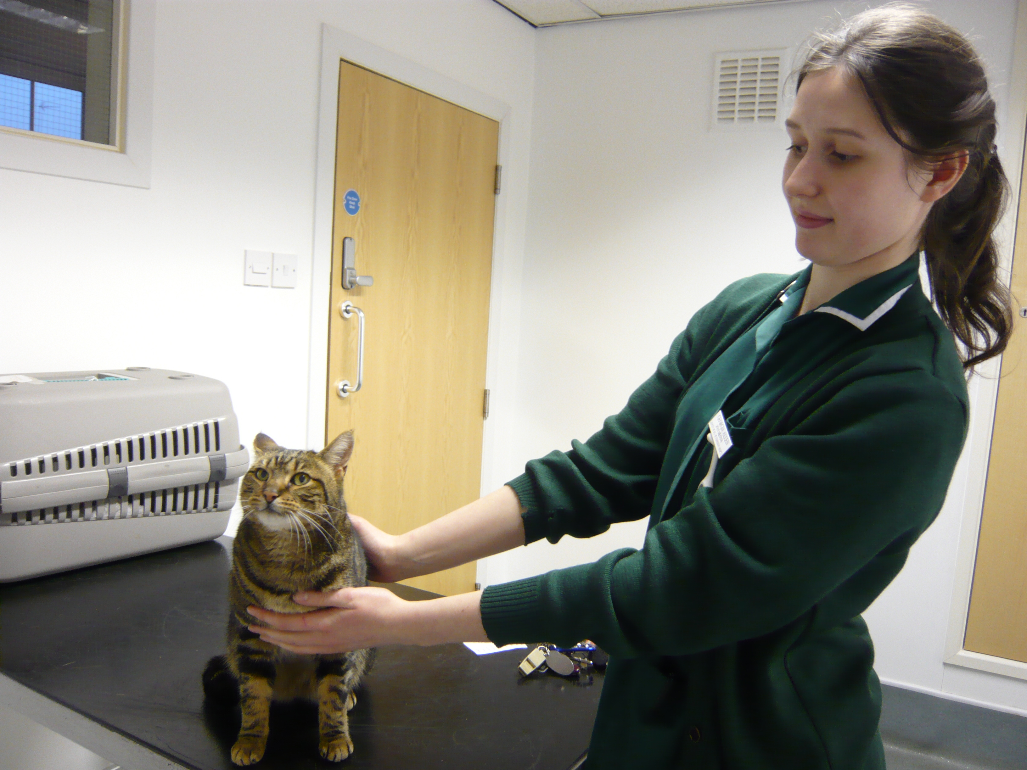 Tabby O'Malley with vet nurse