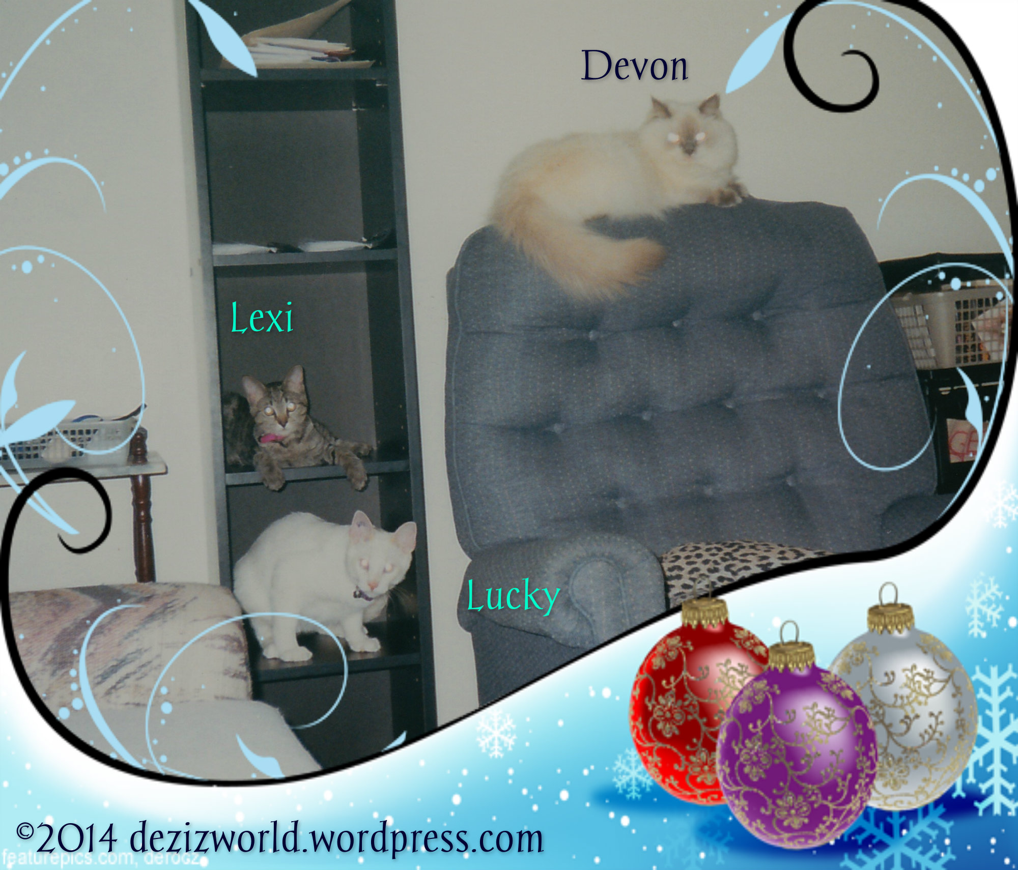 Devon, Lexi and Lucky